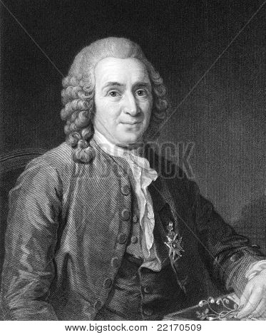 Carl Linnaeus (1707-1778). Engraved by C.E.Wagstaff and published in The Gallery Of Portraits With Memoirs encyclopedia, United Kingdom, 1833.,