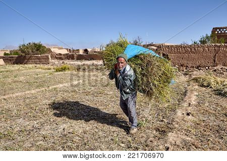 Yazd, Iran - April 23, 2017: Elderly man carrying an enormous bundle of hay, near ancient clay village.