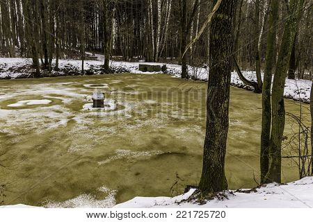 Brown-yellow ice on a forest pond. A ring from  white snow on the shores of a pond. Winter in the park.