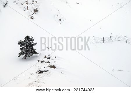 Beautiful snowy landscape in the mountains with a lone conifer tree on the hillside. Snow protection grid against avalanches.