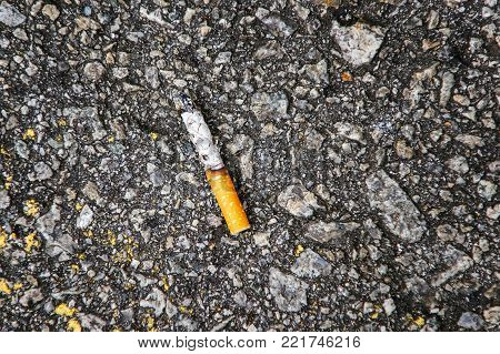 Cigarette butts on the street. Cigarette on the pavement