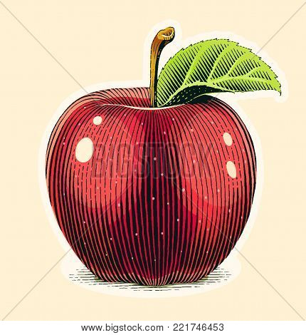 Apple fruit with green leaf. Scratch board style. Organic healthy food. Eps10 vector illustration.