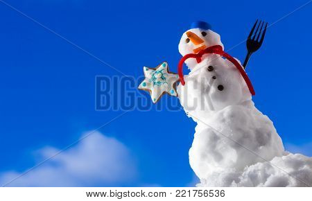 Little happy christmas snowman in blue screw top as hat red scarf and with fork gingerbread cake cookie star outdoor. Winter season seasonal specific. Blue sky background.