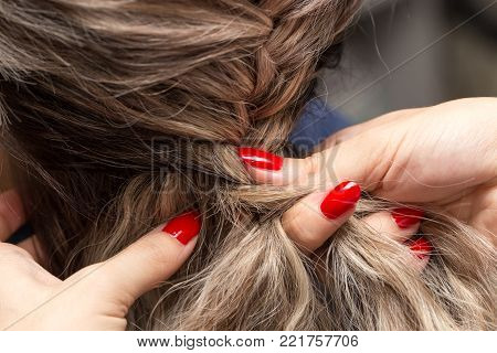 braided pigtails in the beauty salon . In the park in nature