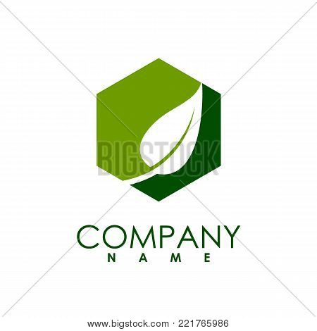 hexagon leaf ecology nature element vector, abstract organic leaf with hexagon background logo, Leaf logo ecology graphic creative template, Environment decoration modern leaf emblem