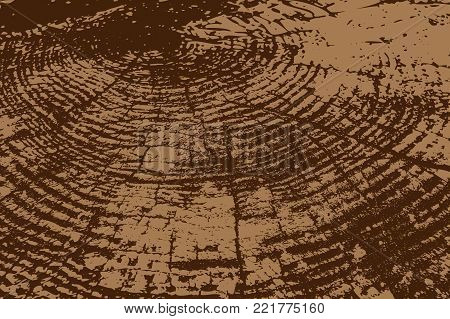 Realistic wood texture - vector pattern - brown, Wood cross section background,
