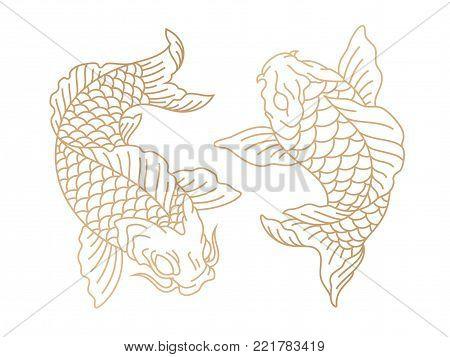 Koi fish. Japanese carp fish. Vector illustration
