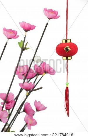 Chinese new year festival decorations, Blurred background image of plum flowers ,Red lantern isolated on white background,Chinese character