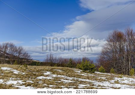 Majestic view of cloudy sky, winter mountain, snowy glade, conifer and deciduous forest from Plana mountain   toward Vitosha mountain, Bulgaria, Europe
