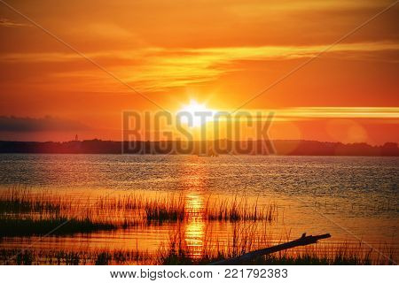 A beautiful orange coastal sunset with glare and a grassy shoreline with driftwood.