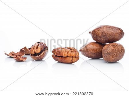Raw pecans with shell on white background with reflection