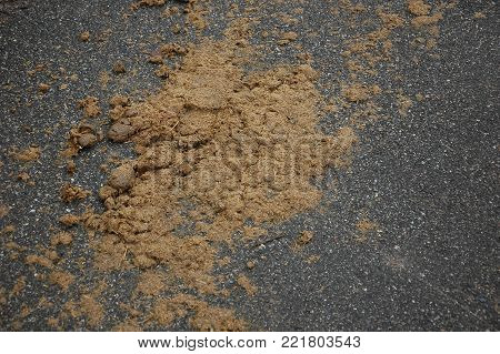 A lot of horse dung on the asphalt close-up.
