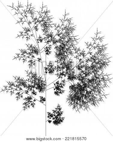 Flat Vector Computer Generated  L-system Fractal Plant - Generative Art