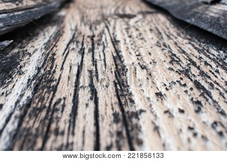 Close-up perspective view of gray obsolete wooden texture with cracks. Selective focus.