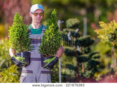 Gardener Shopping Time in the Local Garden Department Store. Caucasian Men in His 30s Buying Two Trees For His Garden Project.