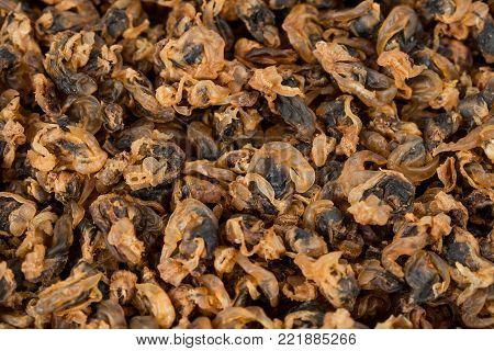 sea food sweet dried clams on dish