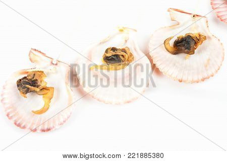 sea food sweet dried clams on white background