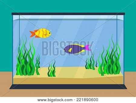 Colorful exotic fishes in a fishbowl with seaweed and sand on the bottom. Vector illustration, flat