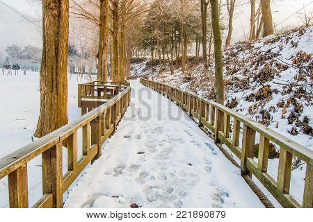 Wooden walkway covered with snow  public park. Park bench on walkway lined with trees on a snowy morning with overcast sky.