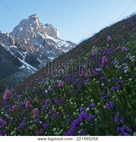 Ushba is one of the most notable peaks of the Caucasus Mountains. Ushba mountain is located in the Svaneti region in Georgia.