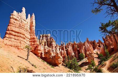 Pink hoodoos and eroded rock formations along Queen's Trail in Bryce Canyon National Park