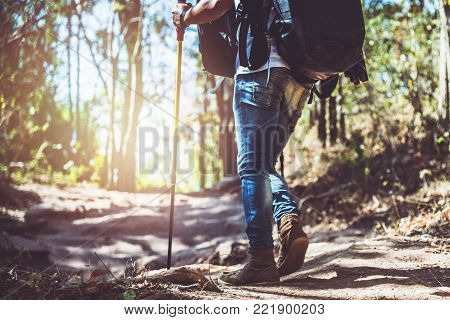 Asian man Traveling photograph Nature. travel relax in the holiday walk in the forest. travel relax in the holiday. Thailand