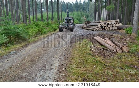 machine for wood transport . South Bohemia, Czech Republic