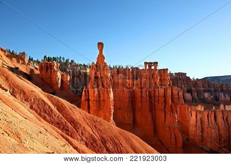 Thor's Hammer hoodoo along the Navajo Trail in Bryce Canyon National Park