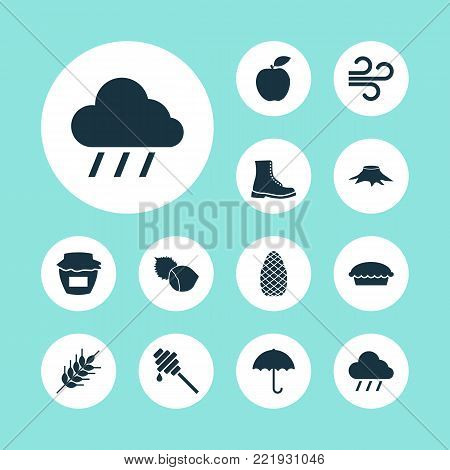 Autumn icons set with filbert, gingham, tart and other tart elements. Isolated vector illustration autumn icons.