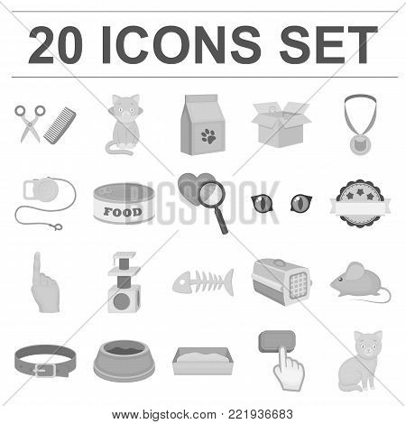 An animal cat monochrome icons in set collection for design. Caring for a cat vector symbol stock  illustration.