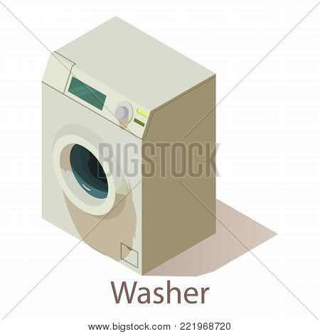 Washer icon. Isometric illustration of washer vector icon for web.