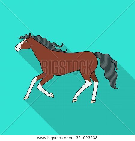Isolated Object Of Steed And Brown Sign. Set Of Steed And Gallop Stock Vector Illustration.