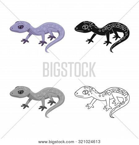 Isolated Object Of Lizard And Gray Sign. Set Of Lizard And Dragon Stock Vector Illustration.