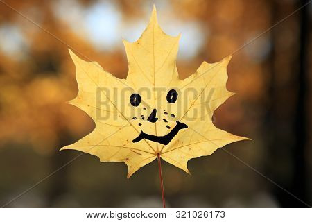 Golden Autumn Time. Yellow Maple Leaf With Gay Emoticon (painted Smile) Against The Sun Light. Fall