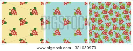 Red Currant. Seamless Pattern. Vector Berries. Natural Fashion Print. Design Elements For Textile Or