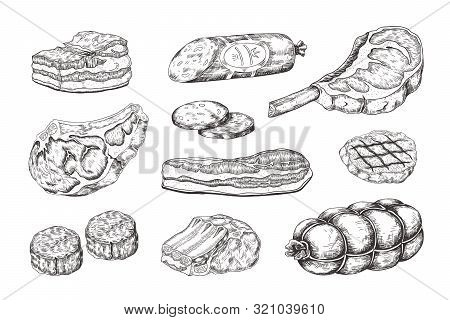 Meat Steak. Vintage Food Sketch With Butchery Products, Pork Ham Bacon Lamb Ribs And Beefsteak. Vect