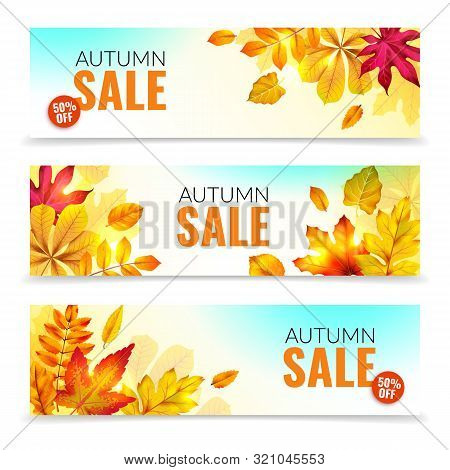 Banners With Fall Leaves. Autumn Season Discount Offers With Red And Orange Realistic Foliage. Color