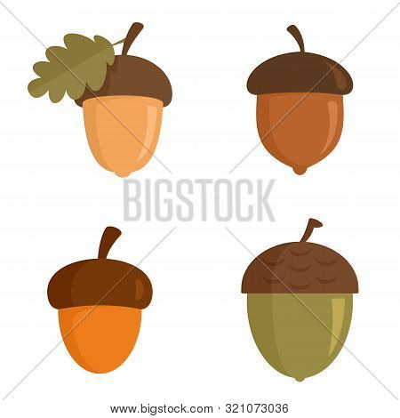 Acorn Icons Set. Flat Set Of Acorn Vector Icons For Web Design