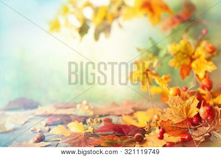 Thanksgiving or autumn scene with leaves and berries on wooden table.  Autumn background with falling leaves. Soft focus.