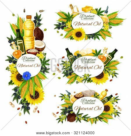Natural Cooking Oil, Isolated Frames. Vector Extra Virgin Olive Oil In Bottle, Corn And Coconut, Sun