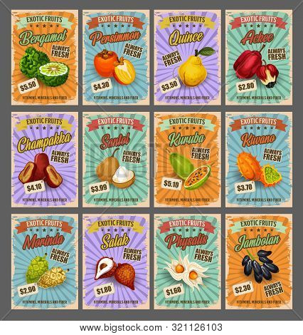 Exotic Tropical Fruits Retro Price Cards, Farm Market. Vector Bergamot And Persimmon, Quince And Ack
