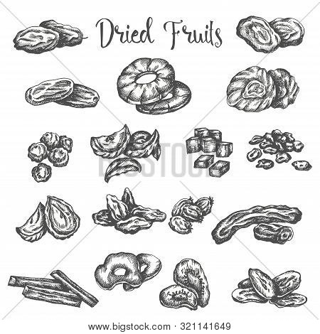 Dried Fruits Hand Drawn Illustration. Healthy Snack Dry Raisins, Prunes And Figs. Sketch Of Dehydrat