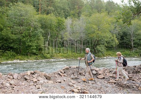 Two active mature trippers with trekking sticks and backpacks moving along riverside with green trees on background