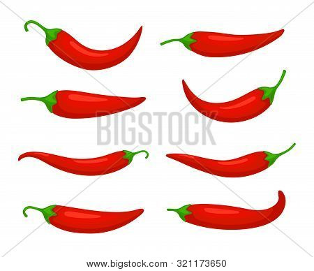 Closeup Chilly Pepper. Hot Red Chili Peppers, Cartoon Mexican Chilli Or Chillies Illustration, Vecto