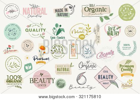 Set Of Signs And Elements For Beauty, Natural And Organic Products, Cosmetics, Spa And Wellness. Vec