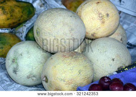 Close Up Shot Of Indian Fruit Of Muskmelons
