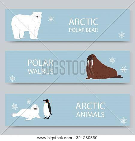 Arctic Animals And North Pole Cartoon Banners Set, Vector Illustration. Antarctica And North Pole Ar