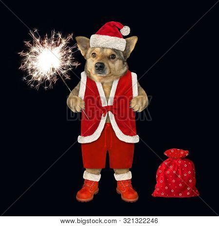 The Dog With A Sparkler Is Dressed In Santa Claus Clothes. The Sack With Christmas Gifts Is Next To