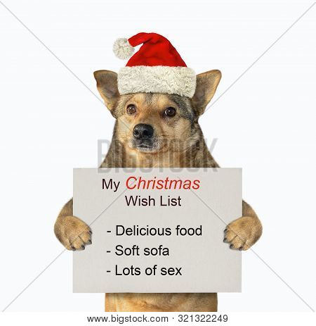 The Dog In A Santa Claus Hat Is Holding The Funny Christmas Wish List. White Background. Isolated.