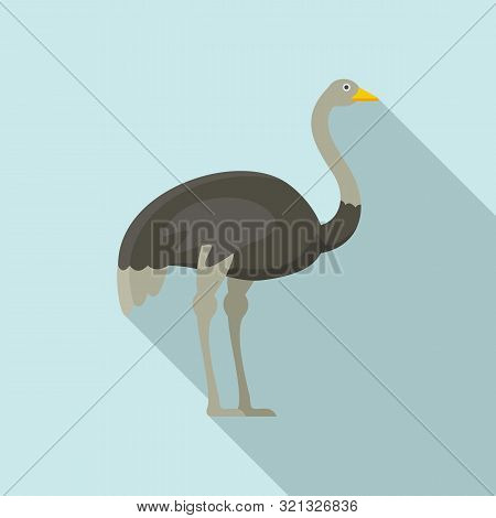 Grey Ostrich Icon. Flat Illustration Of Grey Ostrich Vector Icon For Web Design